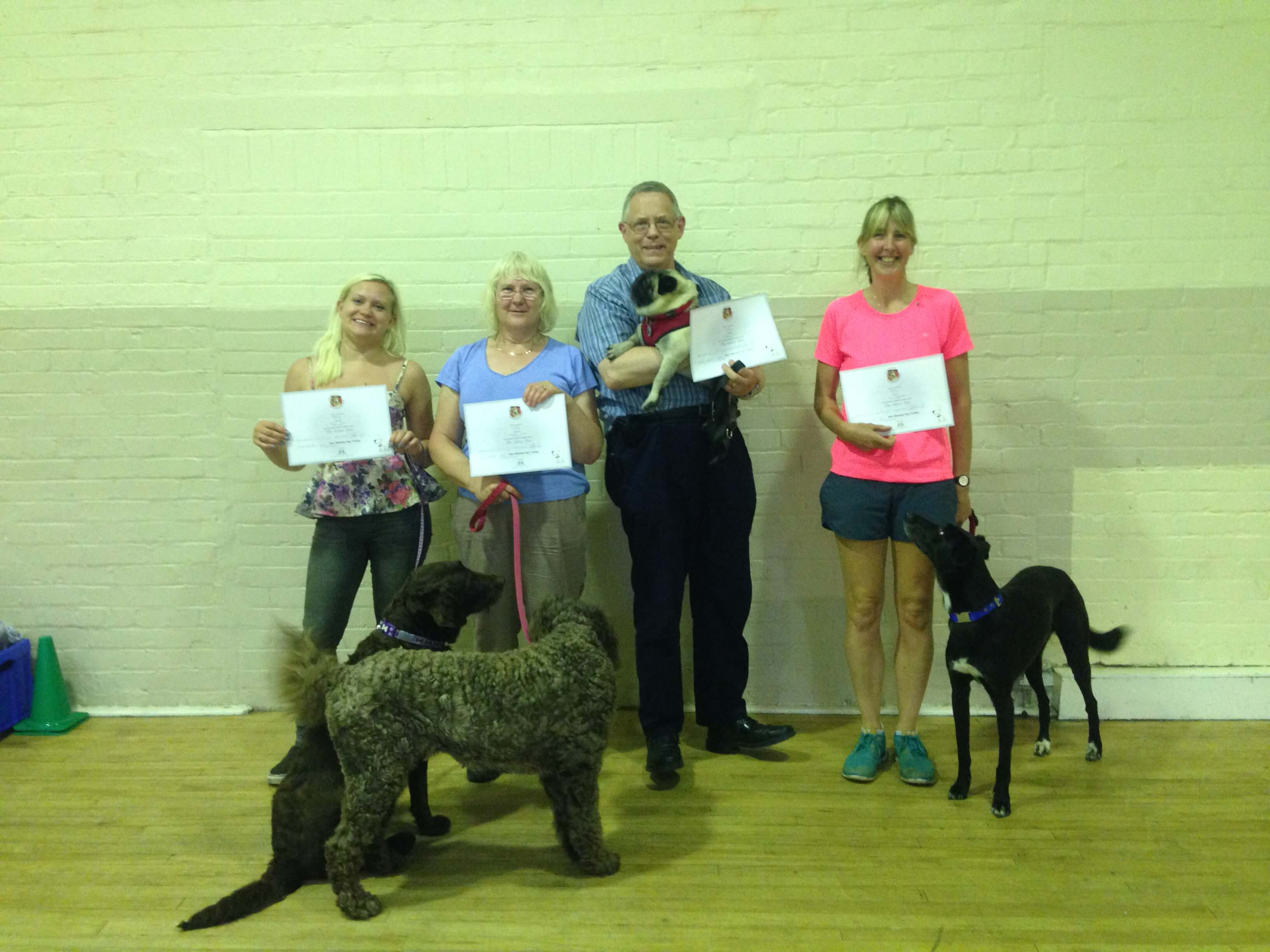 Dog Classes
